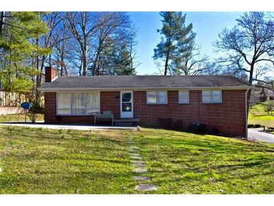 Greeneville TN Single Family Home For Sale: $155,000