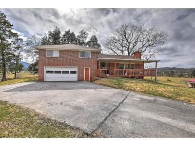 Greeneville TN Single Family Home For Sale: $315,000