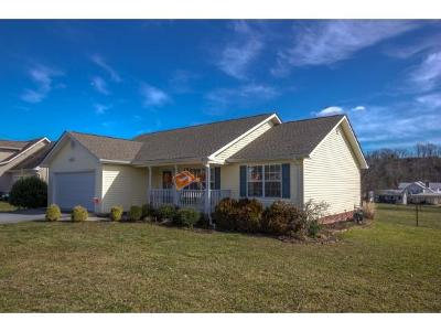 Piney Flats TN Single Family Home For Sale: $209,000