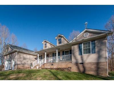 Bristol VA Single Family Home For Sale: $239,000