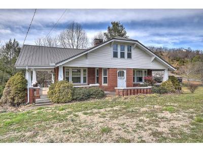 Greene County Single Family Home For Sale: 720 Chuckey Pike