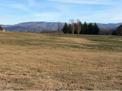 Greene County Residential Lots & Land For Sale: Holly Creek Rd