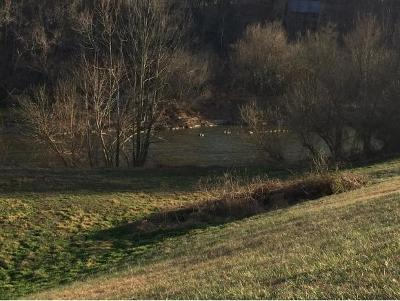 Greene County Residential Lots & Land For Sale: Riverwalk Court