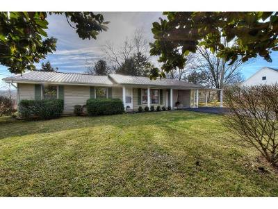 Johnson City TN Single Family Home For Sale: $165,000