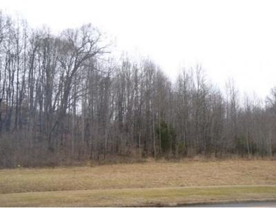 Blountville Residential Lots & Land For Sale: - Highway 126