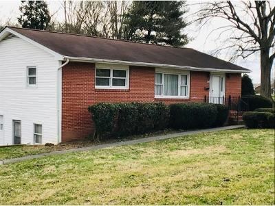 Kingsport Single Family Home For Sale: 1141 Bridwell Street