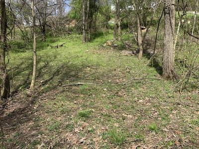 Blountville Residential Lots & Land For Sale: 49 Woods Edge Dr.