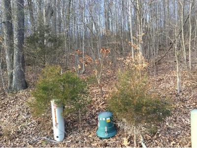 Blountville Residential Lots & Land For Sale: 58 Woods Edge Dr.