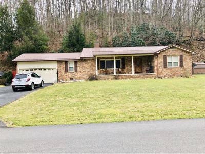 Single Family Home For Sale: 229 Jackson St.