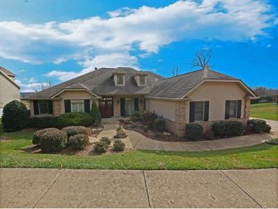 Johnson City Single Family Home For Sale: 216 Michaels Ridge Blvd