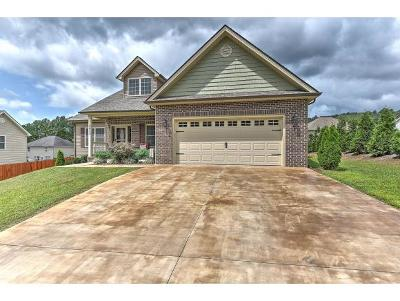 Kingsport Single Family Home For Sale: 2012 Falling Leaf Dr.