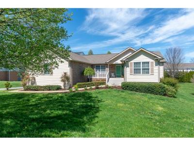 Abingdon Single Family Home For Sale: 20789 Meadowbrook Drive
