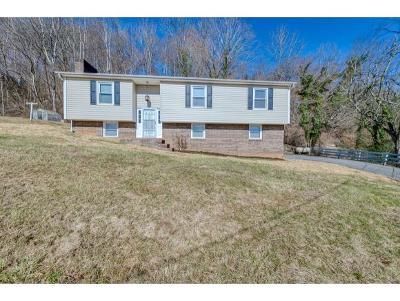 Bristol VA Single Family Home For Sale: $139,900