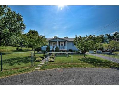 Elizabethton Single Family Home For Sale: 132 Joan Ann Drive
