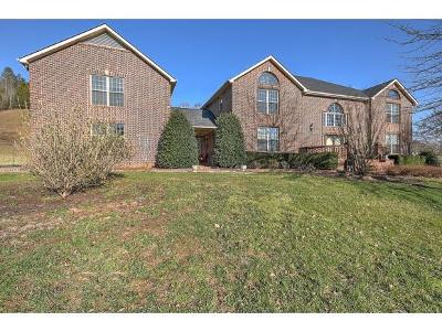 Kingsport Single Family Home For Sale: 380 Mitchell Road