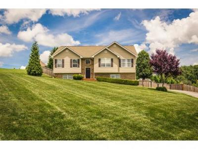 Single Family Home For Sale: 275 Shipley Rd