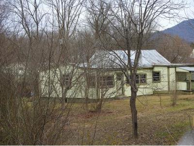 Greeneville TN Single Family Home For Sale: $38,500