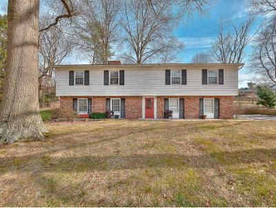 Kingsport Single Family Home For Sale: 509 Forestdale Rd