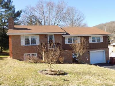 Johnson City Single Family Home For Sale: 3703 Deepwood Dr.