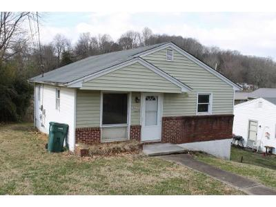 Bristol VA Single Family Home For Sale: $57,500