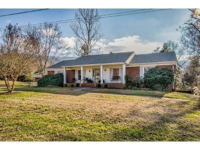Kingsport TN Single Family Home For Sale: $227,000