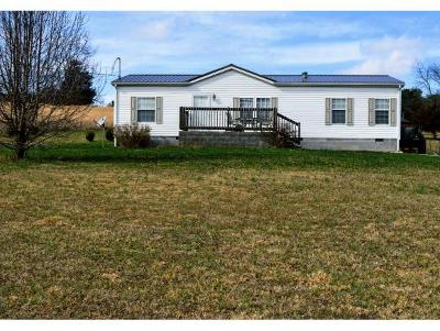 Greene County Single Family Home For Sale: 245 Price Road
