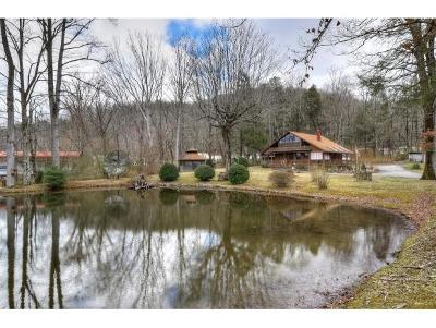 Erwin Single Family Home For Sale: 1341 Martins Creek Road