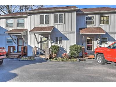 Piney Flats Condo/Townhouse For Sale: 113 Point Shore Pvt Dr