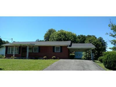 Bristol VA Single Family Home For Sale: $99,750