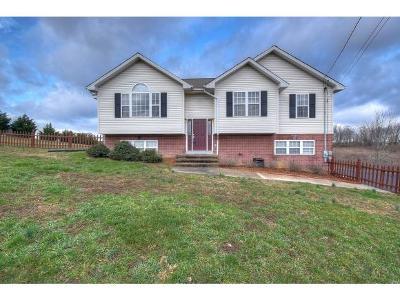 Washington-Tn County Single Family Home For Sale: 1033 Mountain Meadows Drive