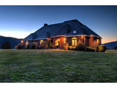 Carter County Single Family Home For Sale: 273 C Grindstaff Rd