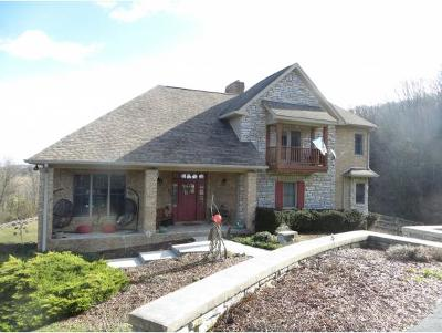 Abingdon Single Family Home For Sale: 23547 Winterham Drive