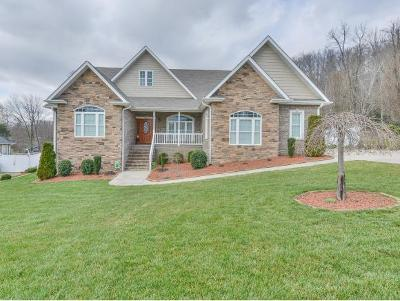 Elizabethton Single Family Home For Sale: 109 Willshire Drive