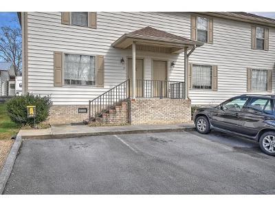 Johnson City Condo/Townhouse For Sale: 563 Boring Chapel Road #19