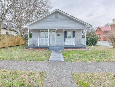 Johnson City Single Family Home For Sale: 813 Wilson Avenue
