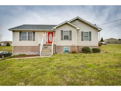 Washington-Tn County Single Family Home For Sale: 387 Leesburg Rd