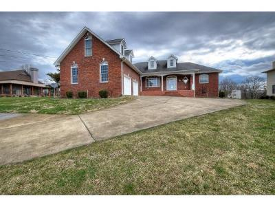 Gray Single Family Home For Sale: 143 Free Hill Ext.
