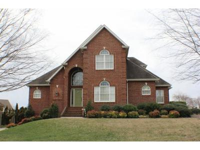 Kingsport Single Family Home For Sale: 108 Warrior Falls Dr.