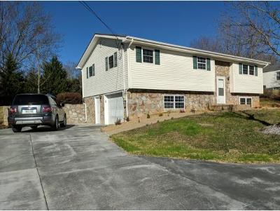 Greeneville TN Single Family Home For Sale: $139,900