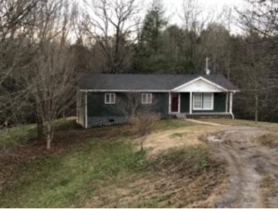Rogersville Single Family Home For Sale: 256 Richards Rd