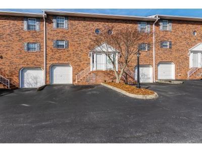Johnson City Condo/Townhouse For Sale: 204 E Mountain View Rd #28