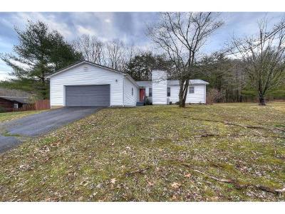 Johnson City Single Family Home For Sale: 2701 Austin Village Blvd