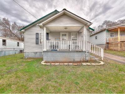 Kingsport Single Family Home For Sale: 349 Virgil Ave
