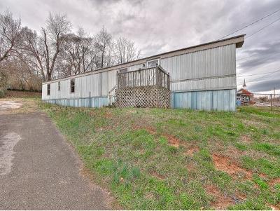 Kingsport Single Family Home For Sale: 353 Virgil Ave
