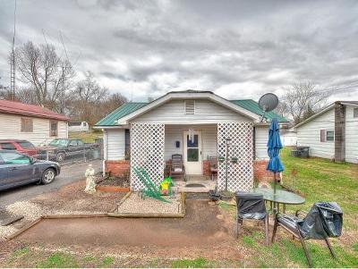 Kingsport Single Family Home For Sale: 360 Virgil Ave
