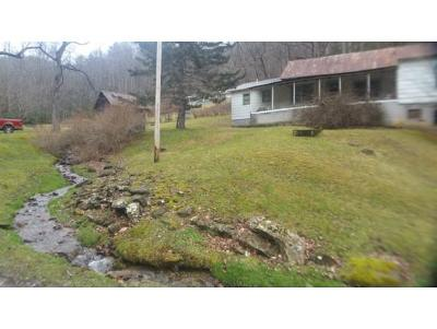 Roan Mountain TN Single Family Home For Sale: $72,000