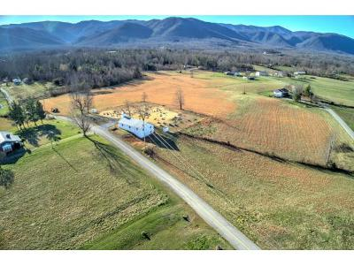 Greene County Residential Lots & Land For Sale: Greystone Road