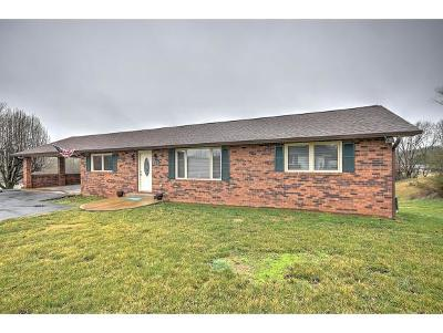 Kingsport Single Family Home For Sale: 3325 Grandview Drive