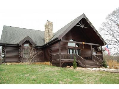 Kingsport Single Family Home For Sale: 673 Lakeside Dock Drive