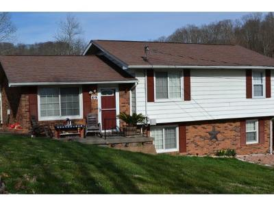 Kingsport Single Family Home For Sale: 1691 Randich Drive